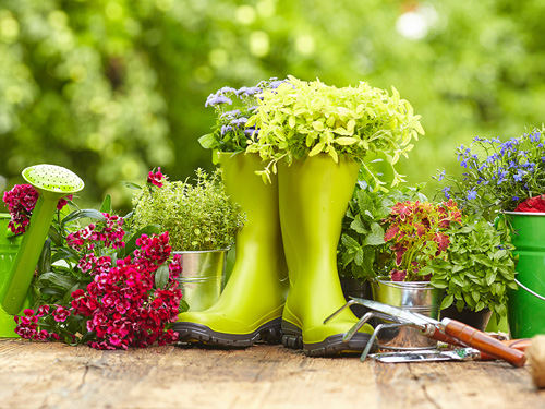 The Benefits of Gardening in Addiction Recovery